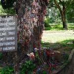 Deux jours à Phnom Penh, des visites bouleversantes
