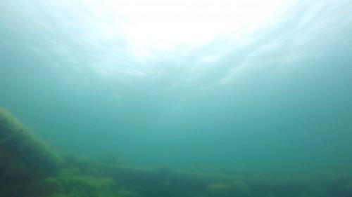 Plongée dans le Lac Baikal3