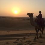 Deux jours à Jaisalmer, une ville aux portes du désert