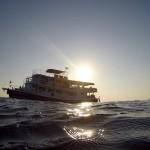 3 jours de croisière-plongée aux Iles Similan